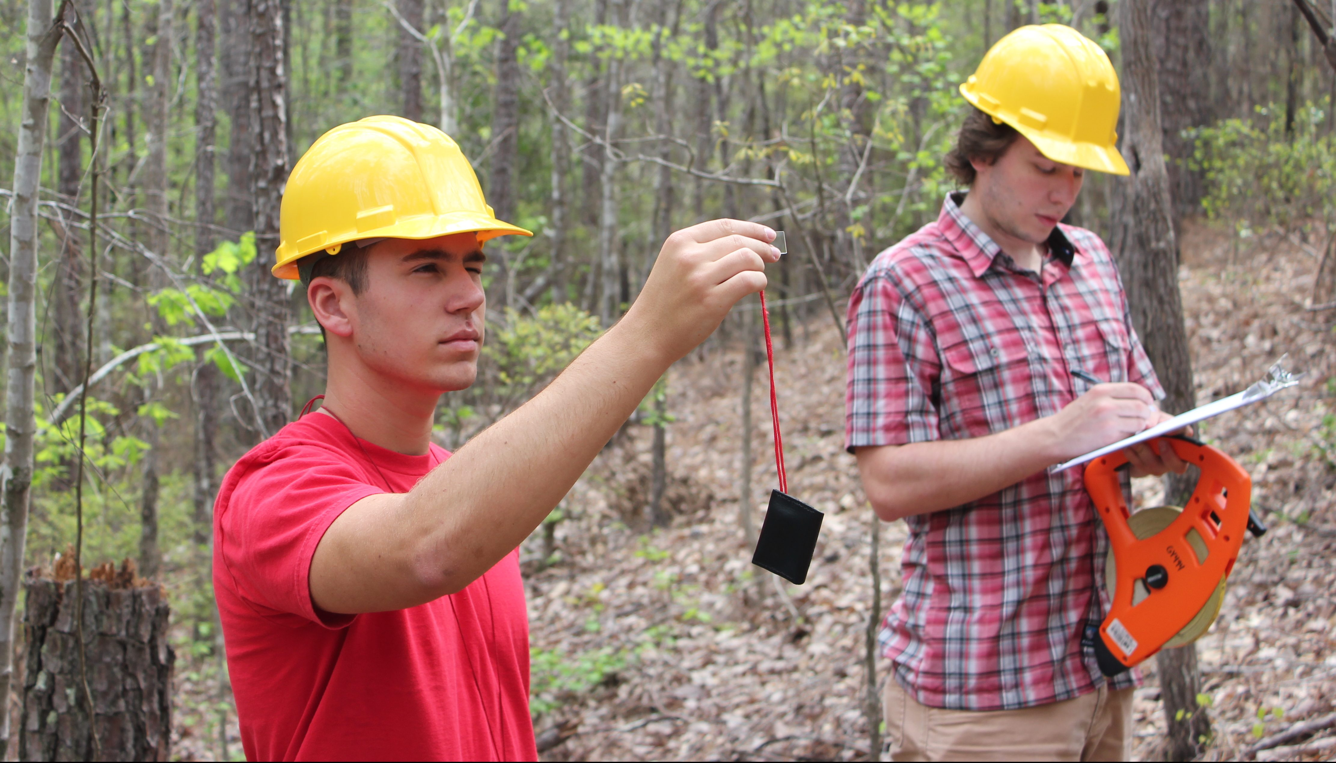 male students surveying a wooded area