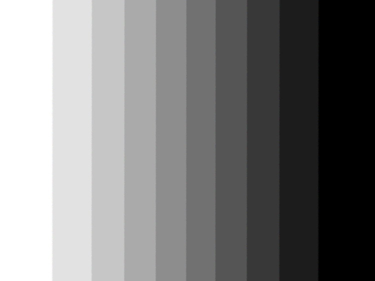 a 10 step gray scale useful to calibrate monitors and scanners.