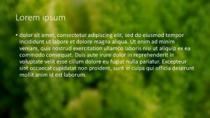 white lorum ipsum text with an out-of-focus image background